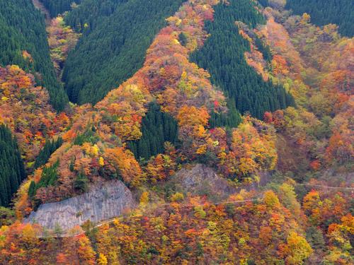 ナメゴ谷の紅葉。奈良県観光公式サイトの写真を拝借